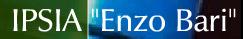 i.p.s.i.a. enzo bari (associata all\'isa di castelmassa) - badia polesine